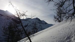 RANDO SNOW5